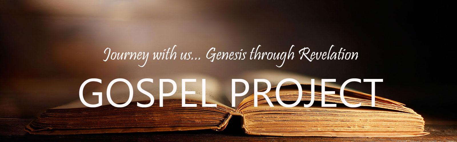 Bible Study For Life